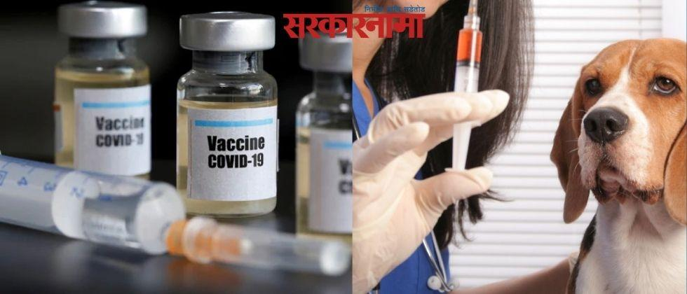 Three women have been vaccinated for anti rabies instead of corona