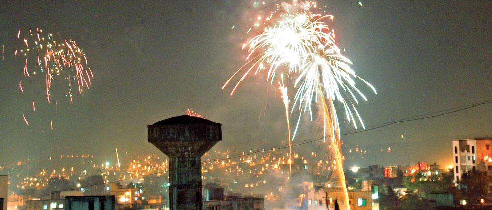 rss affiliated swadeshi jagran manch opposes firecrackers ban