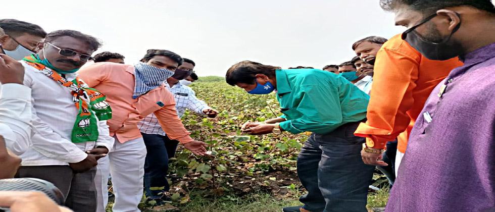 RPI Minister Ramdas Athavale went to the field and inspected the damage