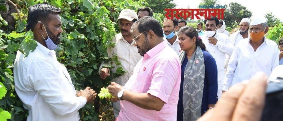 Raju Shetty canceled the campaign rally and inspected the damage caused by the rains