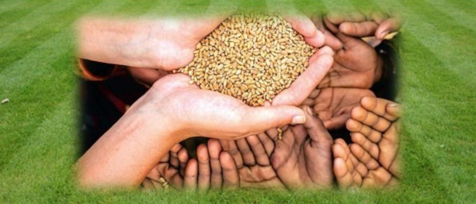 Many States demand Free food grains scheme to continue