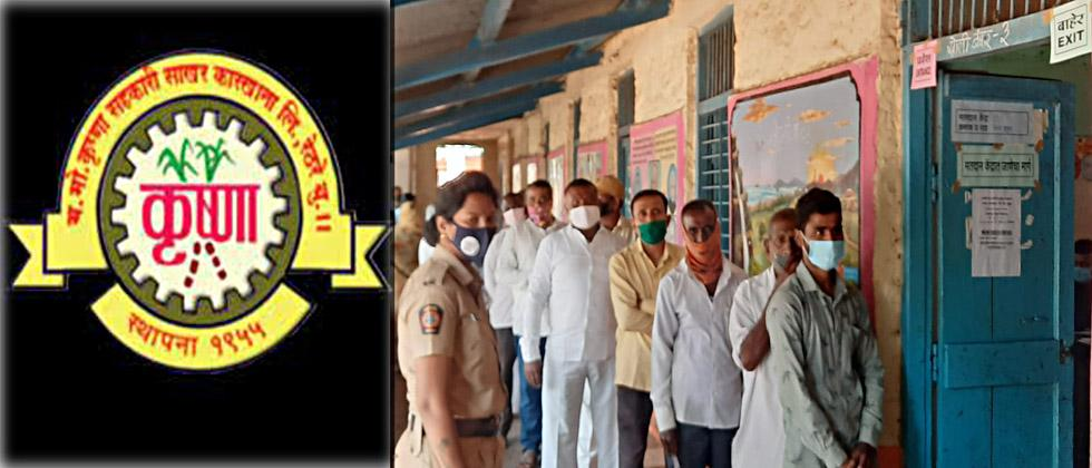 for Krishna Sugar factory election today voting