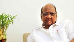 sharad pawar says he is not candidate for president election