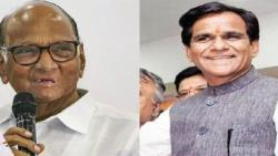 I did not know that Raosaheb Danve is an expert in astrology: Sharad Pawar