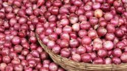 Onion Exported from London Found in Bhiwandi