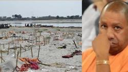 CM Yogi Adityanath has admitted that bodies are flowing in the river Ganga