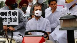 Rahul Gandhi reached near parliament by tractor in support of farmers protest