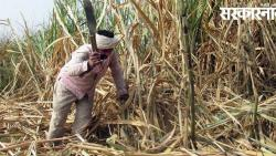 Beed Budget- suger Cane Worker Analysis News