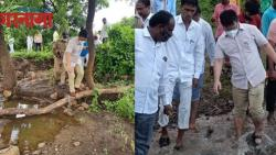 Beed Collector Inspect News