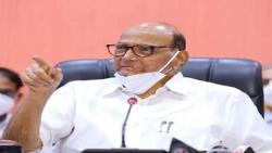 sharad pawar press conference news aurangabad