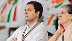 congress working committee postpones party president election