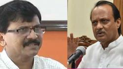 Dy CM Ajit Pawar reacts on MP Sanjay Rauts Certified goons comment