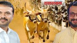 Bullock cart race: Amol Kolhe's demand accepted by Sunil Kedar