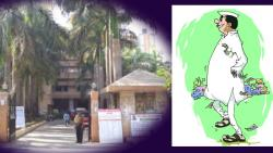 High Court Stays Co-opted Corporators Appointment in Mira Bhayander