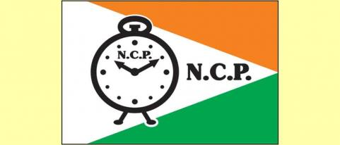 pimpri ncp will benefit from ward type municiple eletion